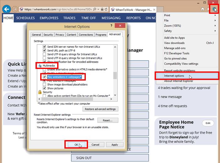 Internet explorer settings to show grids